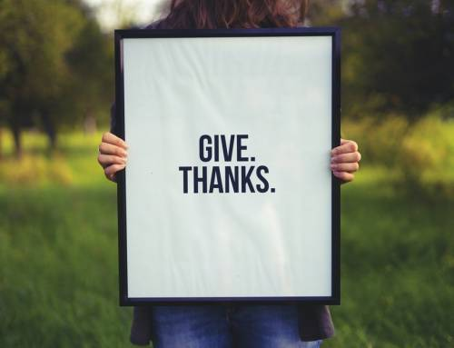 13 things to give thanks for